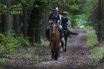 Jazda konno – świetny sposób na spędzanie wolnego czasu