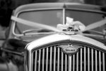Czym warto kierować się w czasie wybierania ozdób ślubnych dla samochodu?